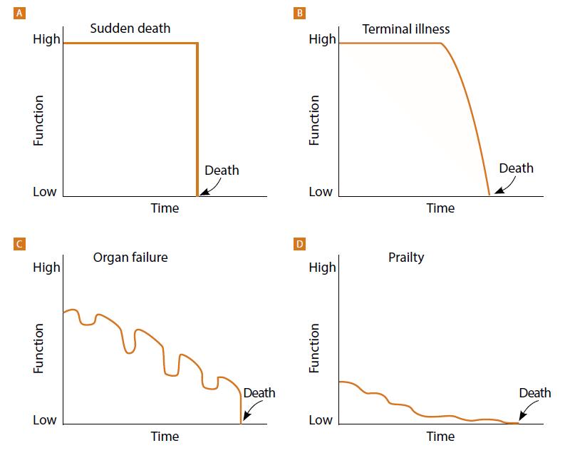 Trajektorie pacientů před smrtí<br> (Zdroj: End-of-life trajectories. Reproduced with permission from: Lunney JR, Lynn J, Hogan C. Profiles of older medicare decedents. J Am Geriatr Soc 2002; 50: 1108–1236.)