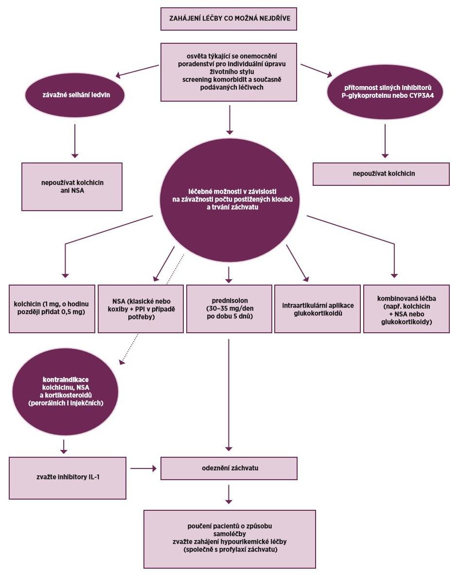 Doporučení EULAR 2016 pro léčbu záchvatů u pacientů se dnou